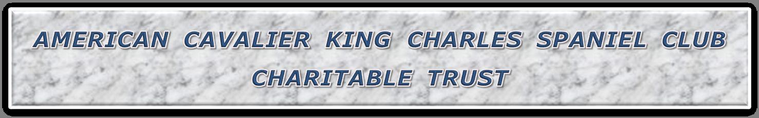 ACKCSC - CT Banner2